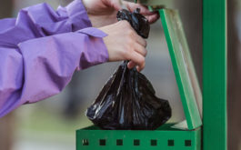 Biodegradable bags for dog poop respect the environment