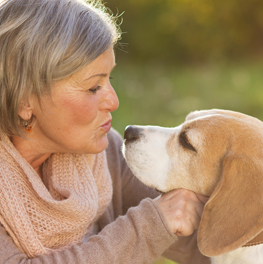 Pet owners experience less stress by spending time with their dogs