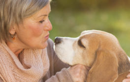 By walking with their dogs, pet owners can stay active and upbeat