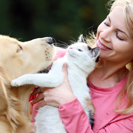 Offset the costs of pet insurance with a plan that covers cats and dogs