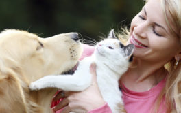 Cats and dogs will be safer with pet insurance, but mind the costs
