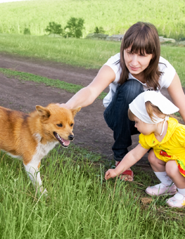 If you have any children, supervise their first encounter with your dog