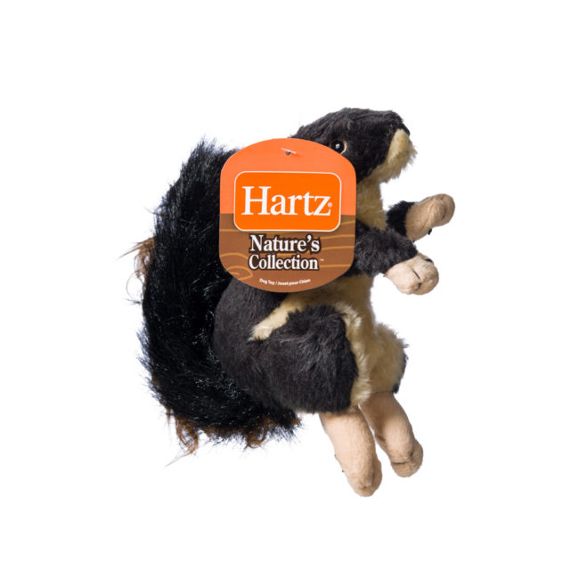 Squeaky dog toy in the shape of a plush squirrel, Hartz SKU 3270004349