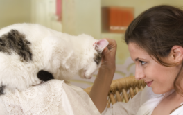 After adopting a cat, woman shows affection by scratching its head