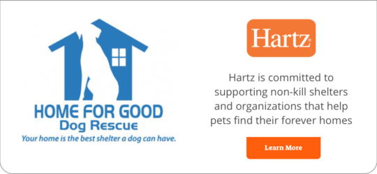 home-for-good-banner