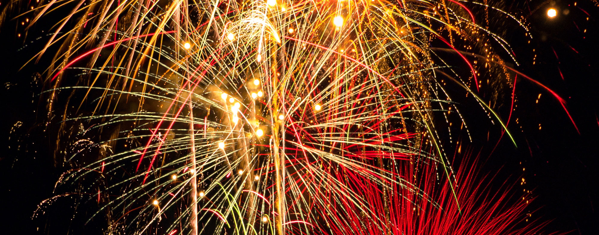 Because of the brightness and volume of fireworks, dogs may be scared