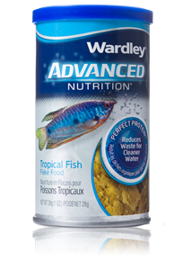 Wardley Advanced Nutrition Perfect Protein Tropical