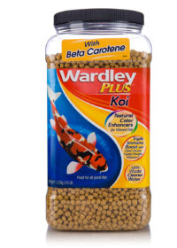 A tub of food pellets for pet koi fish, Hartz SKU 4332415549
