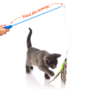 Kitten being tantalized by feather toy on fishing pole, Hartz SKU 3270015379
