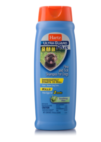 Hartz UltraGuard Plus flea and tick shampoo with aloe for dogs, Hartz SKU# 3270002406.