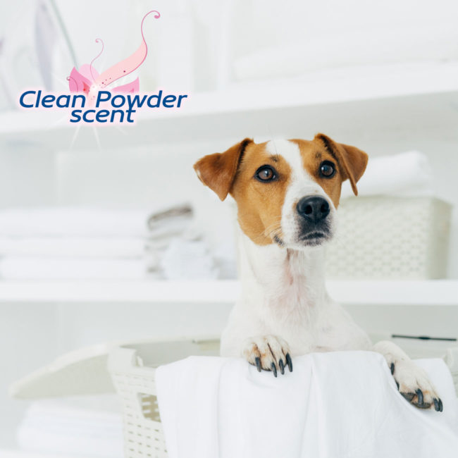Quilted Plus dog pads have a clean powder scent.