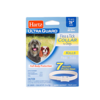 dpg flea treatment, dog tick treatment, flea & tick collar for dogs, dogs and fleas