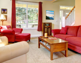 traditional living room in need of a home flea remedy