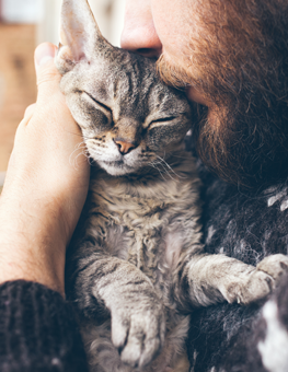 Man holding his cat. Fleas on cats can be addressed with a cat flea treatment.