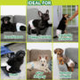 diapers for dogs can be used for puppy training, travel and incontinent dogs..