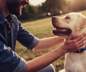 Man petting dog. Can coronavirus in dogs spread to humans?