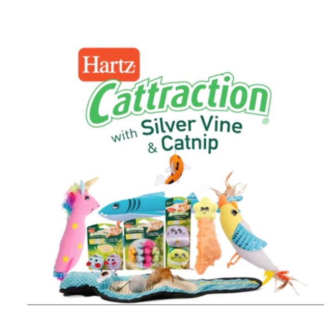Hartz Cattraction with silver vine and catnip. Catnip cat toy video.