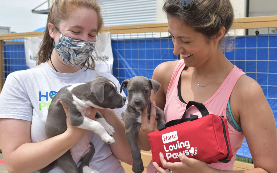 Volunteers at Houston Pets Alive! display puppies available for pet adoption and shelter protection packs donated by Hartz Loving Paws.