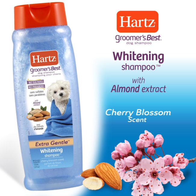 Hartz groomer's best whitener shampoo with cherry blossom scent.