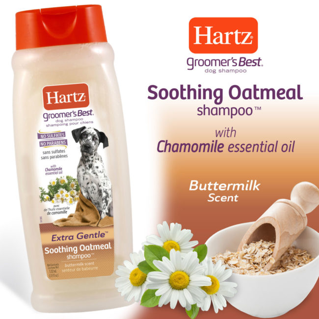 Hartz Groomer's Best soothing oatmeal shampoo with chamomile essential oil and buttermilk scent.