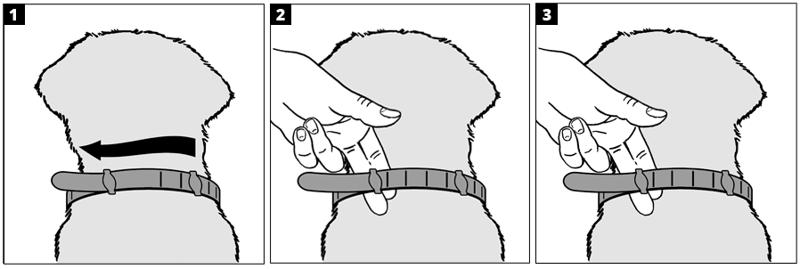 Visual directions for using one of the Hartz flea and tick collars for dogs.