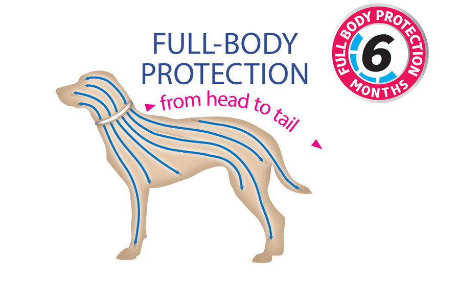 Hartz InControl flea and tick collar offers full body protection for up to 6 months