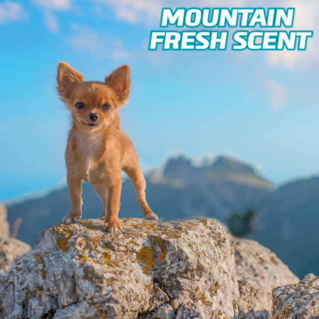 Hartz dog pads with mountain fresh scent.