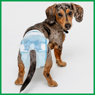Hartz dog diapers have an adjustable tail hole.